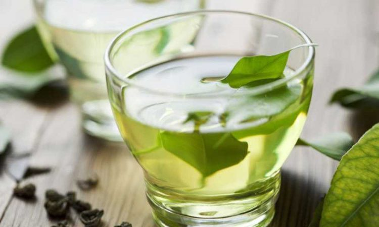 Why is Green Tea Bitter